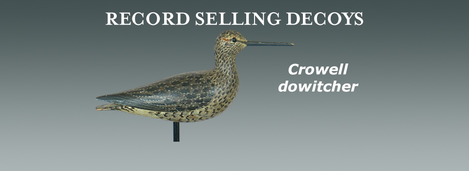 Crowell dowitcher