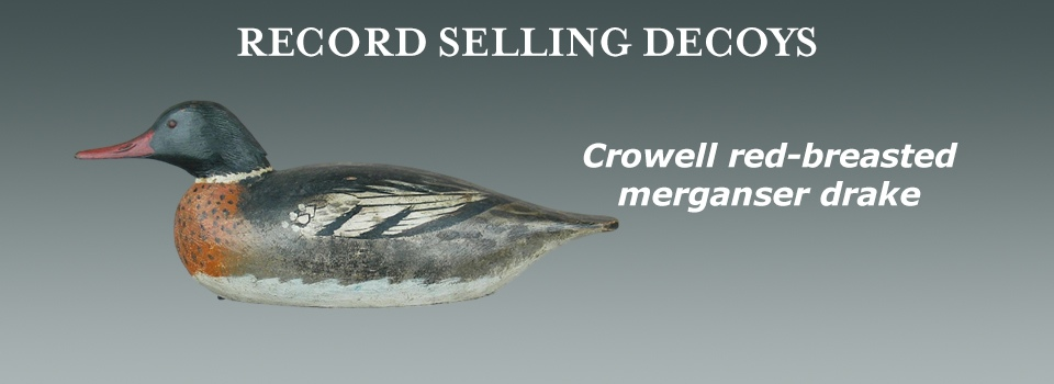 Crowell red-breasted merg