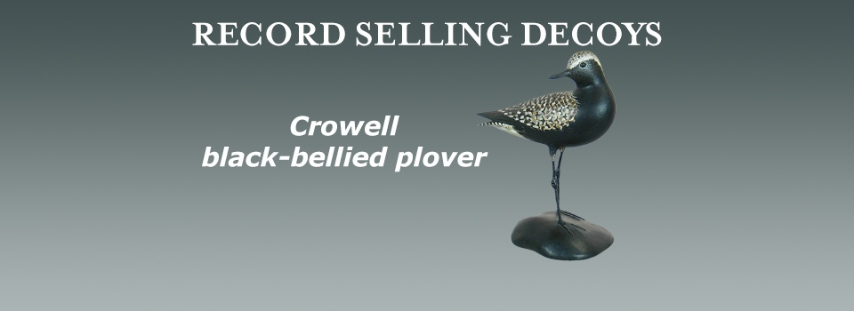 crowell black-bellied plover