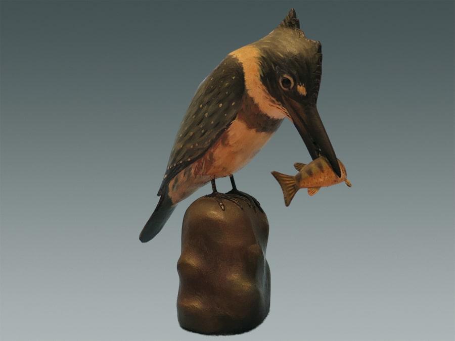 kingfisher-min