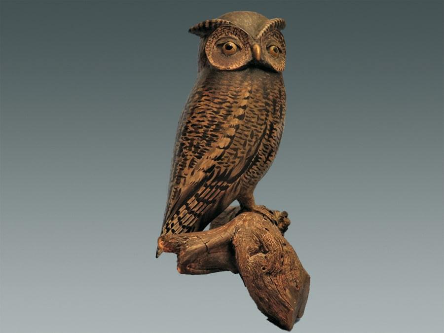 screech owl-min