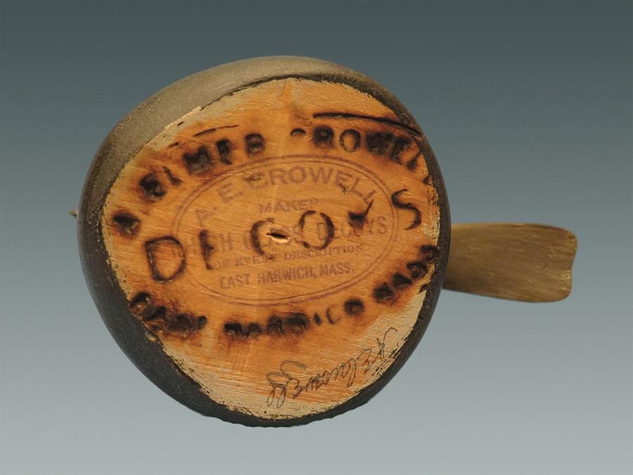 wood thrush bottom-min