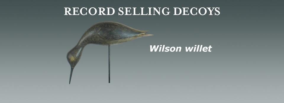 Wilson willet marquee