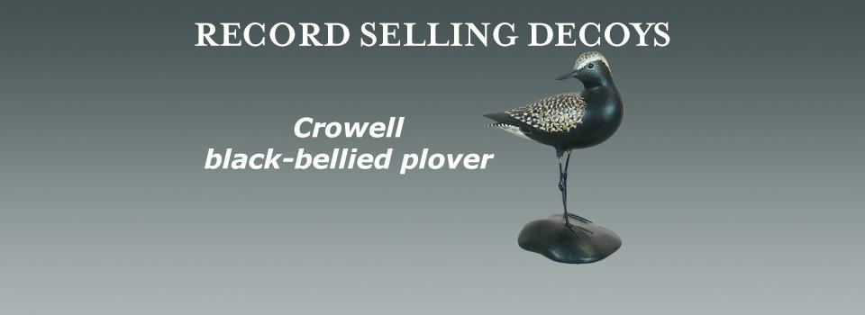 crowell black-bellied plover