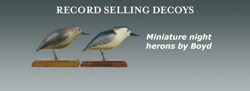mini night herons